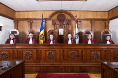 Composition of the Constitutional Court Plenum 2013